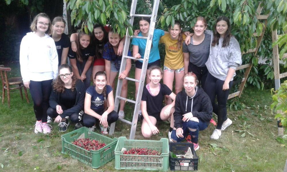 Třešně pro Domov Barbora